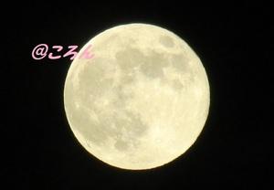 180628満月1jpg.jpg