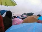 071009TDL雨