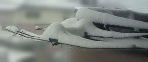 140208大雪1.jpg