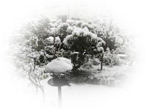 140214また大雪.jpg