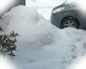 140215大雪1.jpg