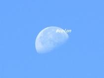 141014日中の月1.jpg