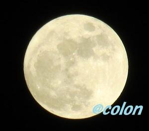 141206満月1-2.jpg