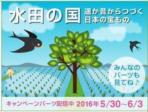 160530水田の国2.JPG