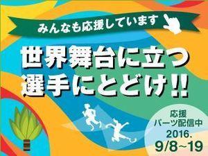 160908パラリンピック1.JPG