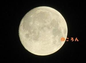 160915十五夜1-1.jpg