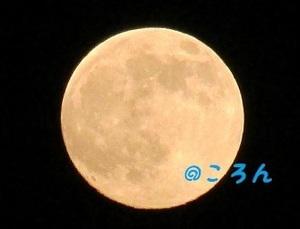 170708満月の前日1-2.jpg