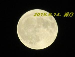 20190914220733199.jpg